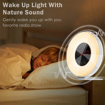 Picture of Alarm Clock Radio, Wake Up Light Alarm Clock