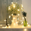 Picture of Warm White String Fairy AA Battery Operated Bright LED