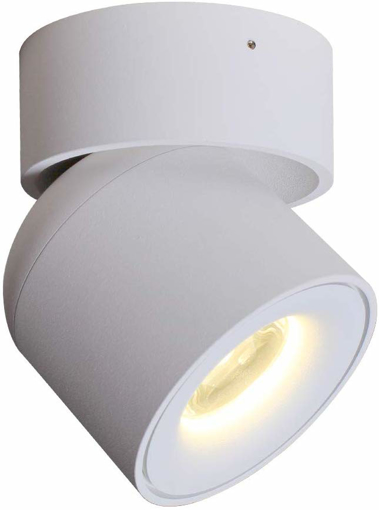 Picture of Surface Mounted COB Spot Light LED Ceiling Accent Lamp