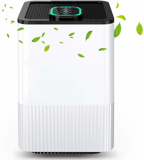 Picture of 4-in-1 Air Purifier with Real HEPA Filter & Ionizer, Domestic Air Filter with Air Quality Indicator and Timer, Capture Smoke, Dust, Pollen, Animal Hair, etc.