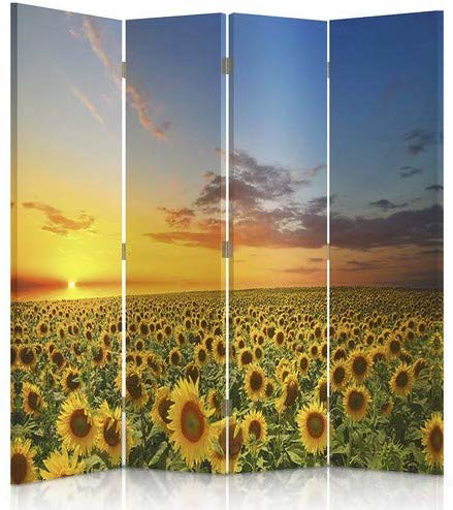 Picture of , Decorative RoomDivider, Paravent, Double sided, 360°, 4 panels (145x180 cm)